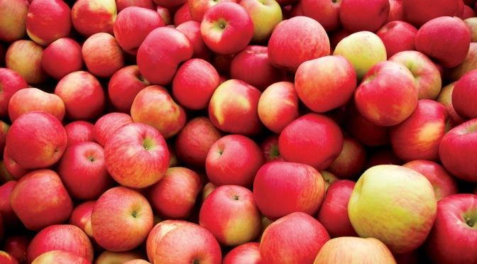 Fanfiction Rec 11: Apples