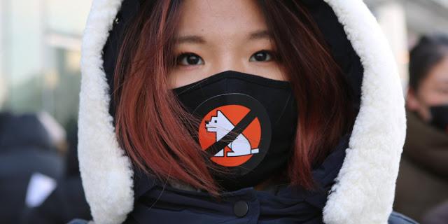 lezhin2bprotest